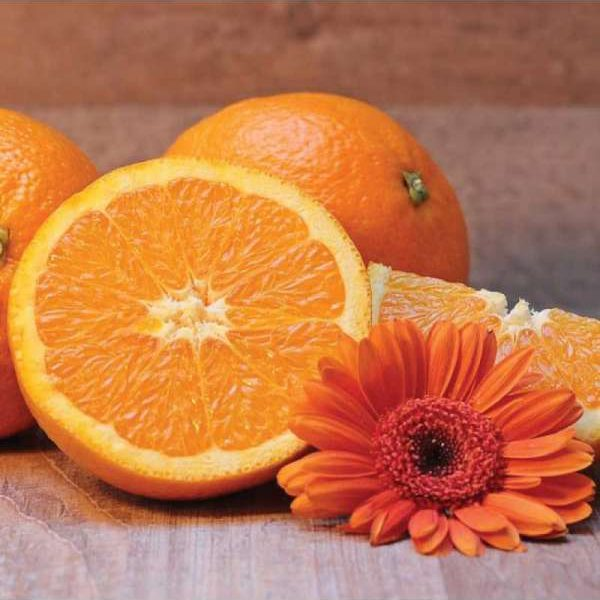 Savon liquide Orange Douce et Argan Bio 500ml