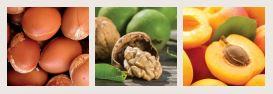 gommage corps bio argance un soin gommant exquis pour une peau plus douce et lisse. Cet exfoliant, composé d'huile d'Argan et de poudre de coques de noix, il désincruste la peau et élimine les cellules mortes, il tonifie et revitalise l'épiderme. La peau respire le bien-être, elle est régénérée, adoucie.