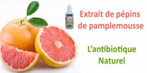 L'extrait de pépins de pamplemousse, un antibiotique naturel