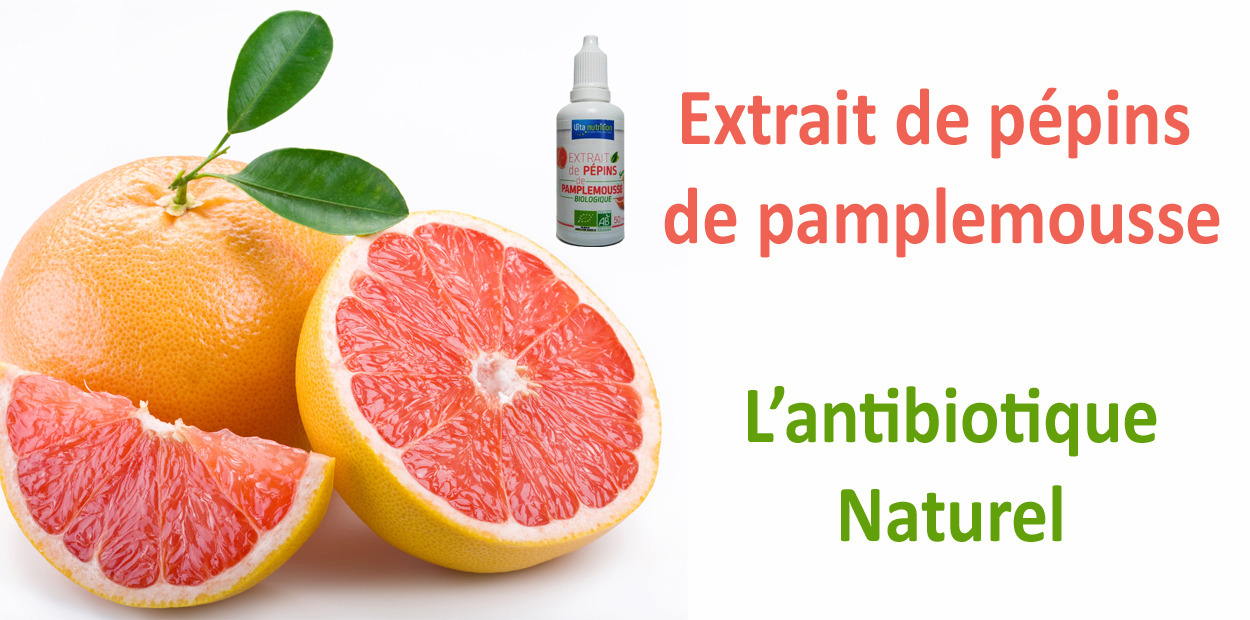 L'extrait de pépins de pamplemousse, un antibiotique naturel