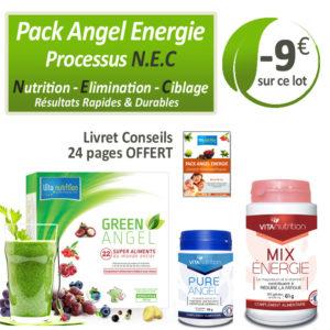 PACK ANGEL ENERGIE _ Processus N.E.C.