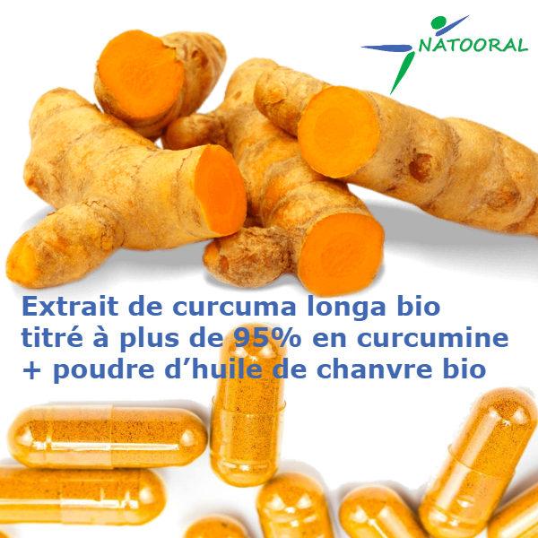Curcuma Longa Bio 90 gélules